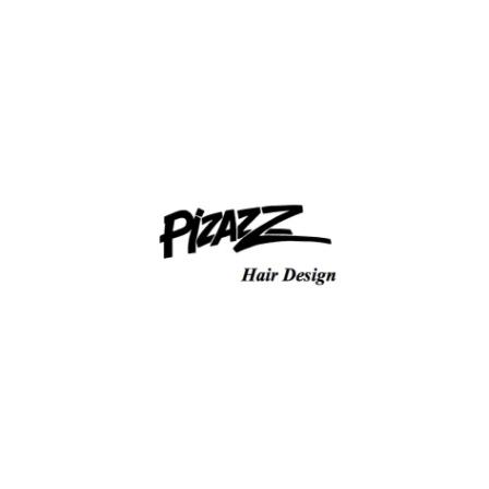 Pizazz Hair Design
